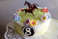 Dětský dort č. 11