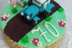 Narozeninový dort č. 16